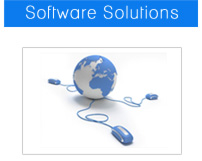 Software and web development services